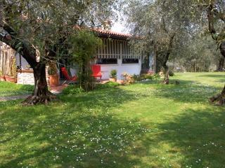 appartamento tra gli olivi del Garda 2/7  pax + ca - Moniga del Garda vacation rentals