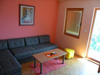 Orange apartment (Villa Ohrid) - Ohrid vacation rentals