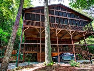 Riverwatch Retreat riverfront luxury on the Toccoa River - Mineral Bluff vacation rentals