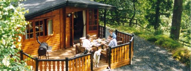 Wide Front Deck is ideal for BBQ - Blelham Tarn (Luxury Log Cabin) - Ambleside - rentals