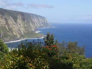 Hale Kukui spectacular ocean cliff cottage with ex - Kukuihaele vacation rentals