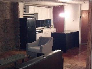 beautiful garden apartment - Brooklyn vacation rentals