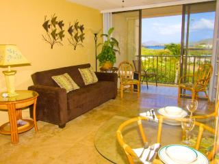 WOW! $99 Feb 23-28  @ Sapphire -In Unit Free WiFi - Image 1 - Saint Thomas - rentals