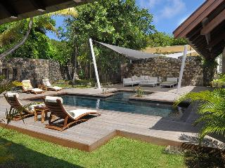 Stunning and modern villa with a private pool! - Poste Lafayette vacation rentals