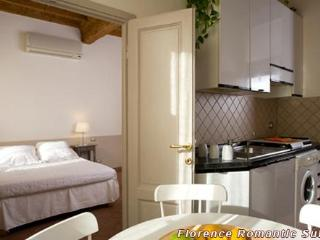 Suite 23 - Nice apartment in centre for 2 - Sesto Fiorentino vacation rentals