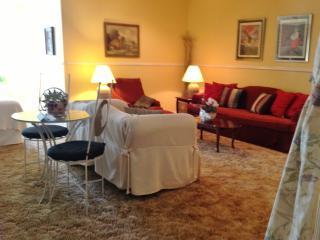 Cozy Condo with Internet Access and A/C - Hughes Springs vacation rentals
