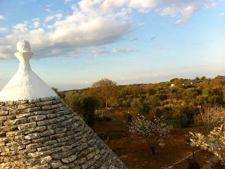 TRULLO SALICE - Ceglie Messapica vacation rentals