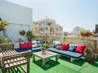 GREAT CITY CENTER FAMILY PENTHOUSE - Tel Aviv vacation rentals