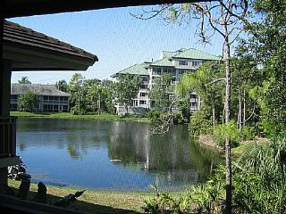 Wild Pines - Bonita Bay E-210 - Bonita Springs vacation rentals