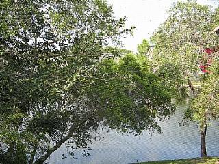 Wild Pines - Bonita Bay E-203 - Bonita Springs vacation rentals