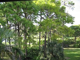 Wild Pines - Bonita Bay C-305 - Bonita Springs vacation rentals