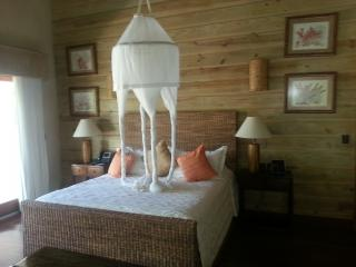 3 Bedroom Golf View Villa at Cap Cana - Santa Barbara de Samana vacation rentals