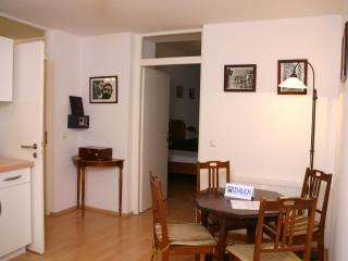 Romantic 1 bedroom Condo in Munich - Munich vacation rentals