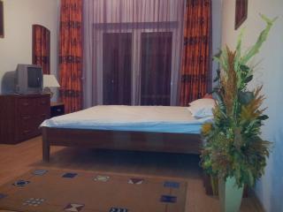 Vila Anca - Poiana Brasov - Busteni vacation rentals