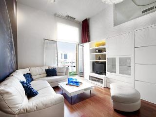 B330 ODYSSEY LUXURY PLAZA CATALUNYA - Barcelona vacation rentals