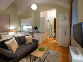 Charming Condo with Internet Access and Dishwasher - Prague vacation rentals