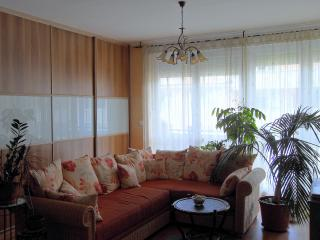 Nice apartment in Angelland - Hungary vacation rentals