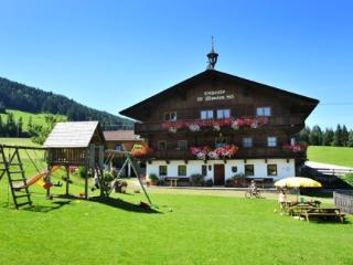 Vacation Apartment in Hopfgarten im Brixental - 538 sqft, comfortable, beautiful, quiet location (#… - Kiefersfelden vacation rentals