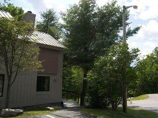 C6003- Managed by Loon Reservation Service - NH Meals & Rooms Lic# 056365 - Lincoln vacation rentals