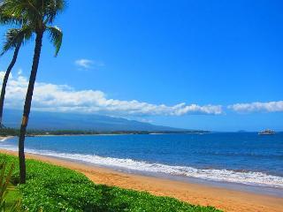 Sugar Beach Oceanfront Ocean View Penthouse 2/2 Great Rates! - Kihei vacation rentals