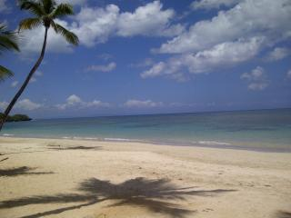 on Las Ballenas Beach ... a dream come true! - Las Terrenas vacation rentals