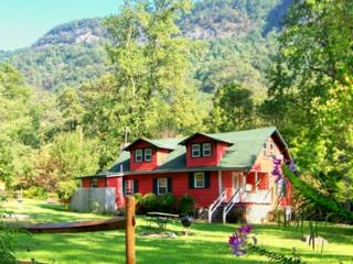 Spacious Cottage Walking Distance to Chimney Rock - Chimney Rock vacation rentals