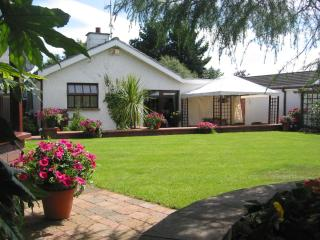 Pinegrove Lodge B&B Ballymena - Ballymena vacation rentals