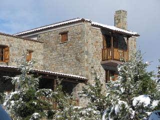 """7 ouranoi"" (7th heaven) chalet - Karpenissi vacation rentals"