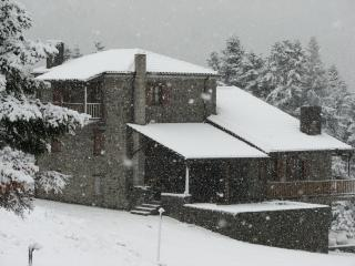 """""""7 ouranoi"""" (7th heaven) chalet - Karpenissi vacation rentals"""