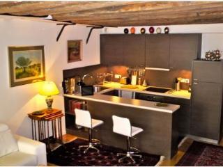 Saint Germain 1 Bedroom luxurious apartment 6th (4408) - Paris vacation rentals