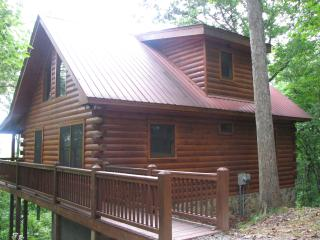 Cozy Cabin with Deck and Internet Access - Cherry Log vacation rentals