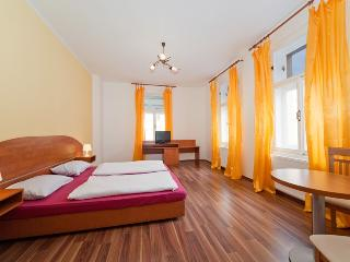 Spacious Apartment in the City center of Prague - Prague vacation rentals