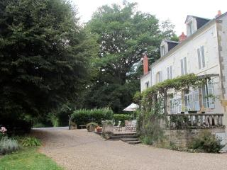 An 19th century family house in Burgundy - La Machine vacation rentals