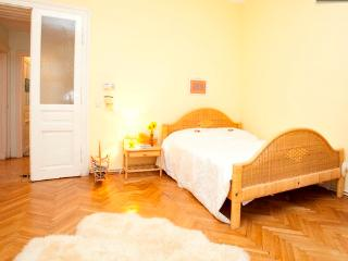 Your beautiful, central& sunny home - Vienna vacation rentals