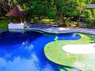 Peaceful & Quiet - A hidden oasis - Kuta vacation rentals