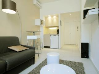 Pet-Friendly Studio in Cannes, Located Between Croisette and Rue d'Antibes - Cannes vacation rentals