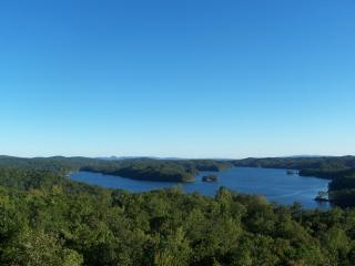 Grandview Lodge with grandviews of Carters Lake! - Ellijay vacation rentals