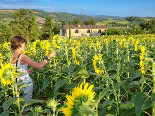 Melograno, Family friendly holiday house with pool - San Venanzo vacation rentals