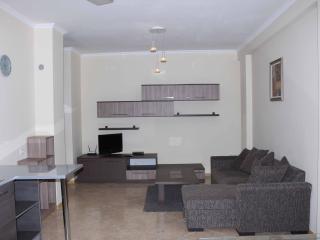 Luxury 2 Bedroom Apartment In Marjanishvili Str - Georgia vacation rentals