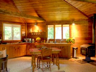Lonnie's Private Eco Lodge By the Water - Watervliet vacation rentals