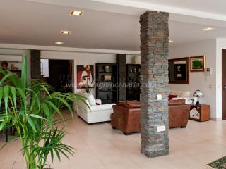 Villa PARRALITO Ingenio- 6 Bedroom - Ingenio vacation rentals