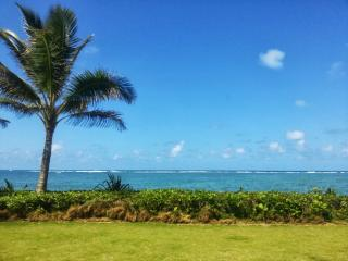 Dreamy Oceanfront Cottage, 20 steps from beach! - Hauula vacation rentals