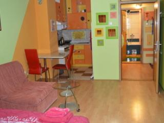 A beautiful cozy studio in the centre of Pozarevac - Pozarevac vacation rentals