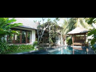 Private Villa Nyoman Bisma - Ubud vacation rentals