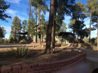 Trevino Mountain Escape! - Ruidoso vacation rentals