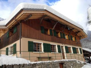 Apartment sleeping 6 Morzine/Montriond, France - Montriond vacation rentals