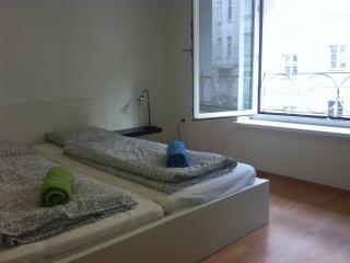 Central Apartment - close to Karlsplatz - Vienna vacation rentals
