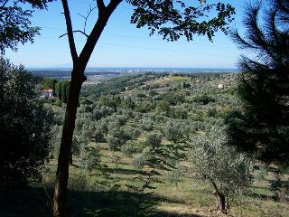 Pet and Kid Friendly Tuscan Vacation Rental - Riparbella vacation rentals