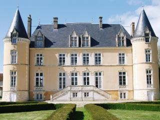 Fairy tale Château in national park - Ancinnes vacation rentals