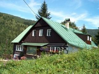2 bedroom B&B with Internet Access in Spindleruv Mlyn - Spindleruv Mlyn vacation rentals